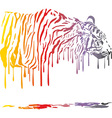 Tiger abstract color painting on a white vector image vector image