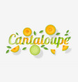 word cantaloupe design in paper art style vector image