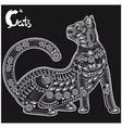 cat on black vector image vector image