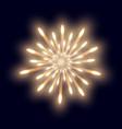 firework on the dark blue background vector image vector image