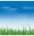 fresh green grass over blue sky vector image vector image