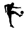 shoot of a soccer player vector image vector image
