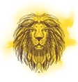 hand drawn with lion head vector image