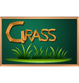 A blackboard with grass vector image vector image