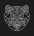 bear head celtic style t-shirt typography design vector image