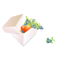 Easter Box vector image vector image