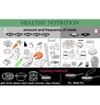 infographic healthy nutrition vector image