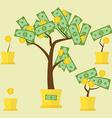 money tree growth vector image vector image