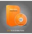 Bright realistic orange isolated DVD CD Blue-Ray vector image vector image