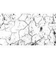 cracked earth desert texture earth vector image