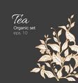 design nature bouquet tea 1 vector image