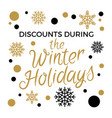 discounts during winter holidays concept vector image vector image