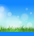 garden blue skies background vector image