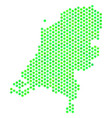green honeycomb netherlands map vector image vector image