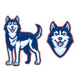 husky dog set vector image vector image