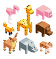 isometric of stylized 3d animals vector image vector image