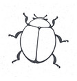 outline bug top view insect in nature hand vector image vector image