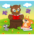 owl reading book for animals vector image vector image