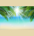 palm leaf background on blue sky and sunbeams vector image