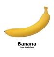 Realistic banana fruit vector image