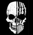 skull tee graphic design vector image vector image
