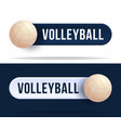 volleyball toggle switch buttons with basketball vector image vector image