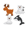 adorable baby animals from cold countries vector image