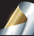 abstract gold and silver background vector image vector image