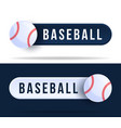 baseball toggle switch buttons with basketball vector image vector image