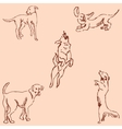 Dogs Sketch pencil Drawing by hand Vintage vector image vector image