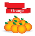 fresh orange on white background vector image vector image