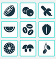 fruit icons set with tropical fruit lime vector image