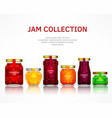 fruit jam collection vector image