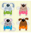 icon funny animals vector image