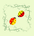 ladybird in frame sign vector image vector image