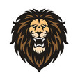 mad lion vector image vector image