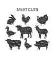 meat cuts set farm animals and poultry with meat vector image