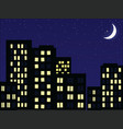 night scenery vector image