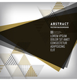 Abstract black triangle Shape Background vector image