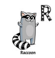 alphabet letter r raccoon vector image vector image