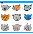 cartoon cats and kittens heads collection vector image vector image