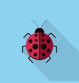 ladybug icon set of great flat icons design vector image