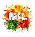 Text fall festival in paper style on multicolor vector image vector image