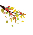 Fall Leaves on Branch vector image