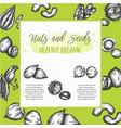 nuts and seeds background collection hand drawn vector image vector image