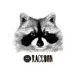 raccoon head black and white vector image