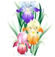 seamless pattern with iris flowers vector image vector image