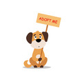 sitting dog with a poster adopt me dont buy vector image vector image