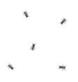 Flies on paper vector image