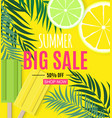 abstract summer sale background with palm leaves vector image vector image